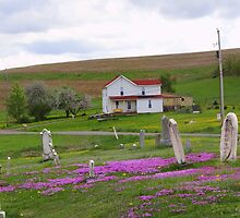 country cemetary by vigor