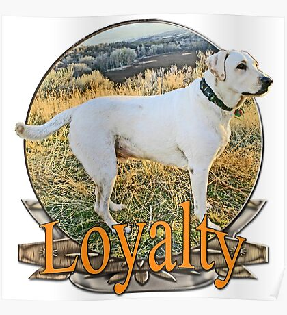 White lab loyalty  Poster