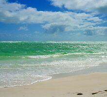Beauty on the Sea by redmondunmore