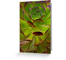 Nature Patterns Greeting Card