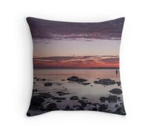 Two Friends Reflecting Throw Pillow