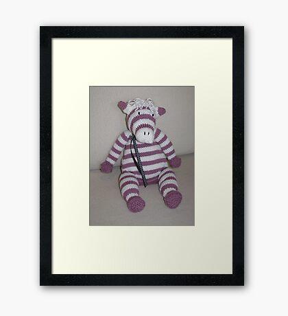 Pink Zebra Foal Framed Print