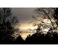 As Dawn Creeps In Over The Trees Photographic Print
