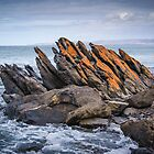 Island Defences by Paul Weston