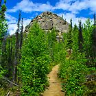 Hiking in Alaska by raymona pooler