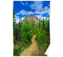 Hiking in Alaska Poster