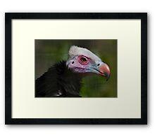 Punk Culture-Vulture Framed Print