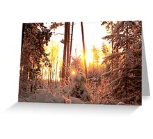 Winter on fire Greeting Card