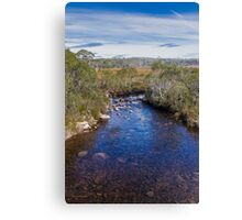 Navarre River, Nr. Derwent Bridge, Tasmania Canvas Print