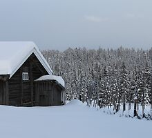 Old farmhouse by UpNorthPhoto