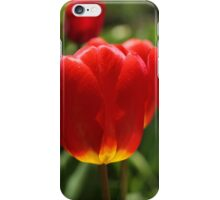 Tulips [iPhone-iPod case] iPhone Case/Skin