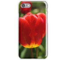 Tulips [iPhone-iPod case] iPhone Case/Skin