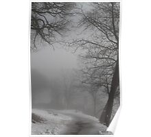 Fog and old trees Poster