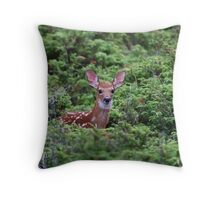 Fawn - White-tailed Deer Throw Pillow
