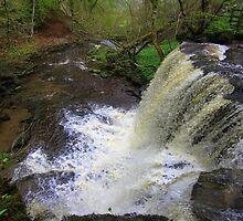 Summer Lodge Falls, Swaledale, England by Ian Alex Blease
