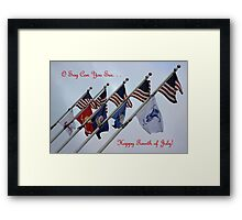 O Say Can You See. . . Framed Print