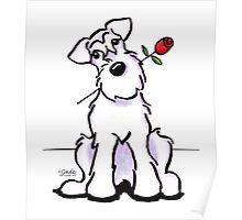 White Schnauzer Sweetheart Poster