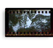 Holga Sprockets Trees and Sky Canvas Print