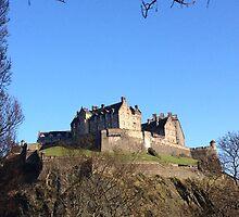 Edinburgh Castle from Princes Street.  by LBMcNicoll