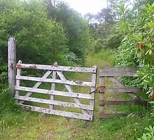 Forestry track gates by lezvee