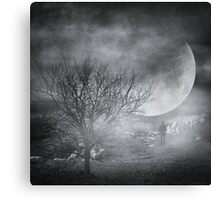 Dark night sky paradox Canvas Print