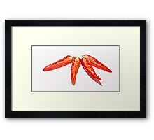 Sliced Red Hot Chillies Framed Print