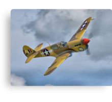 The Fighter Collection's Merlin-Engined P-40F Canvas Print
