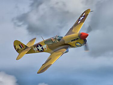 The Fighter Collection's Merlin-Engined P-40F by Colin J Williams Photography