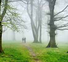 A Walk In The Woods by Susie Peek