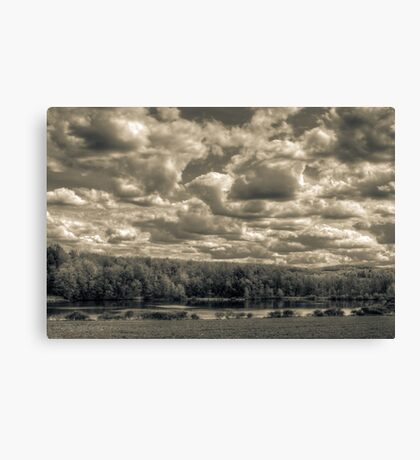 Mannings pond in monochrome Canvas Print