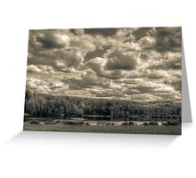 Mannings pond in monochrome Greeting Card