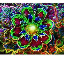 neon flower Photographic Print