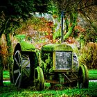 Old Tractor by Bob Noble