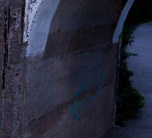 Slender Hiding (when you see it . . .) by Matthew Ellerington