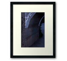 Slender Hiding (when you see it . . .) Framed Print