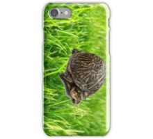 turtle two iPhone Case/Skin