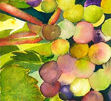On the Vine by Sally Griffin