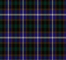 02323 Cook County, Illinois E-fficial Fashion Tartan Fabric Print Iphone Case by Detnecs2013