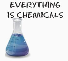 Everything is Chemicals by Annie Ma