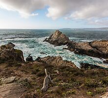 Pinnacle Cove - Point Lobos by Richard Thelen