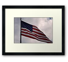 I Pledge Framed Print