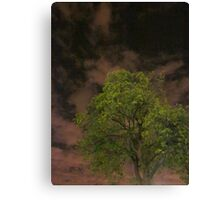 The Tree Accepts Me Canvas Print