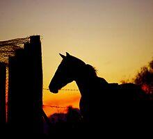 Little western by Penny Kittel