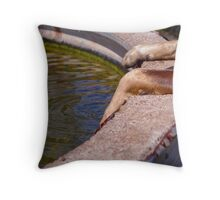 Paws for water Throw Pillow