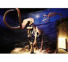 Sabertooth attacking Mammoth Photographic Print