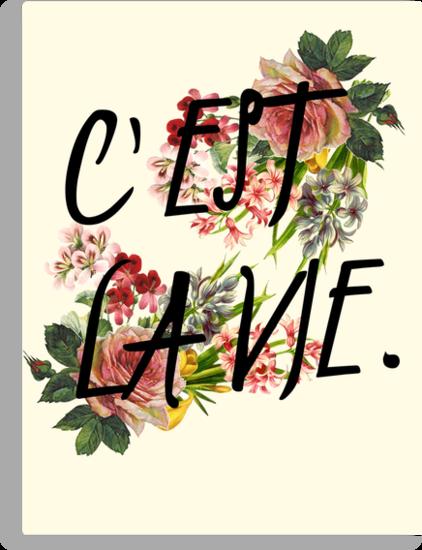 c'est la vie. by oliviajane