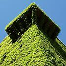 Torre de Sande by ZASPHOTOS