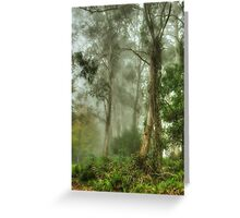Bushland Dreams - Mount Wilson - NSW  - The HDR Experience Greeting Card