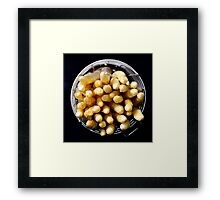 White asparagus on black Framed Print