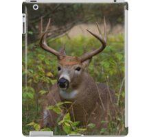 Bullet Buck Takes a Break - White-tailed Deer iPad Case/Skin